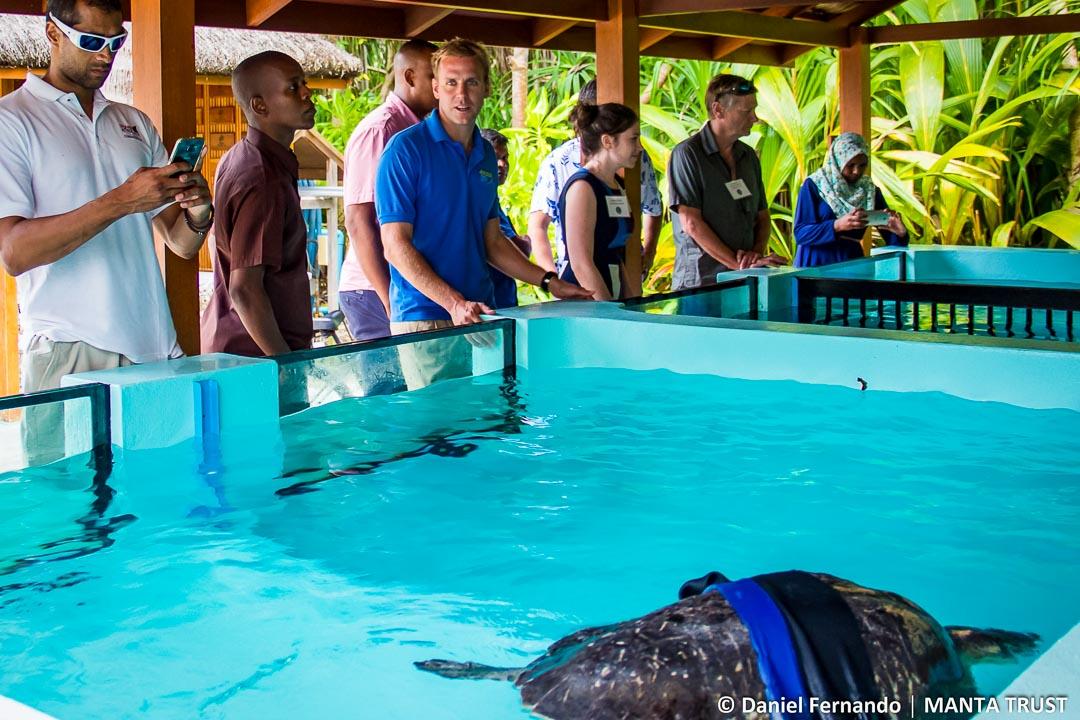 Turtle Rehab Tour (shark symposium, Maldives)