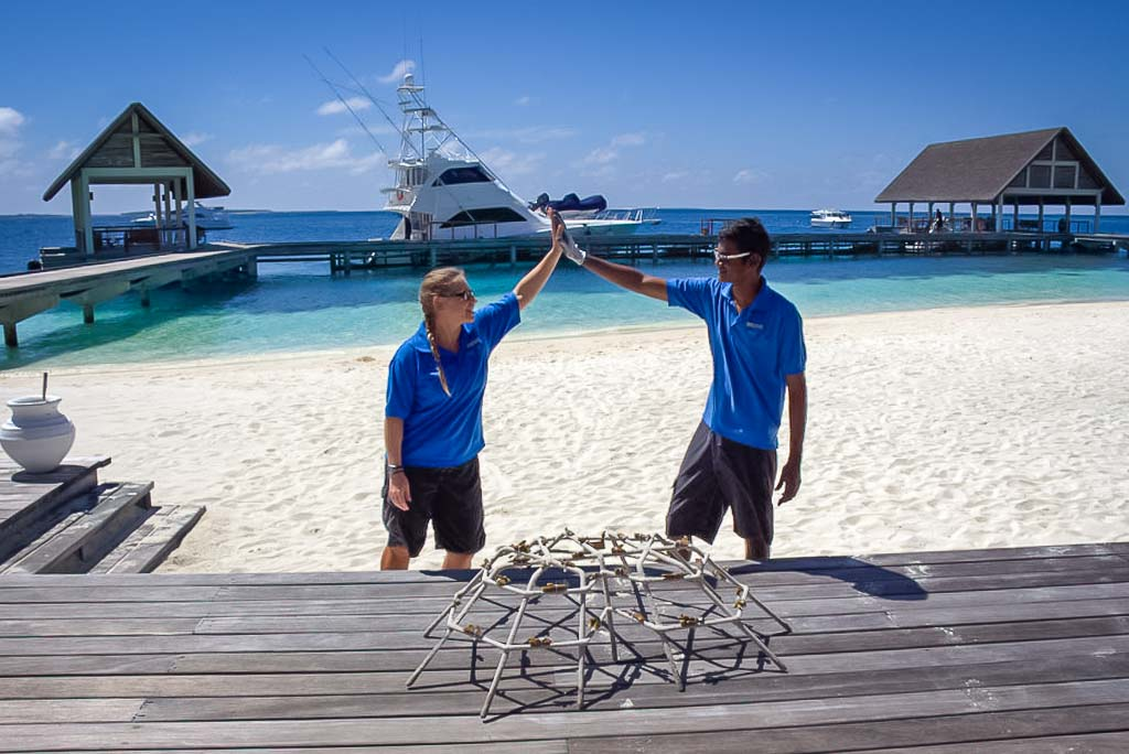 Lauren's blog - marine biology volunteer with Seamarc Maldives - Reefscapers coral frame complete