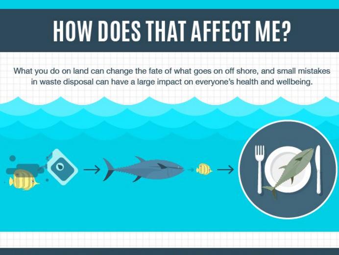 Marine pollution infographic 4×3
