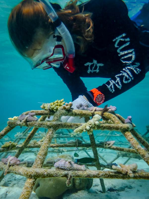 Emily working on the frames (internship Marine Savers Maldives)