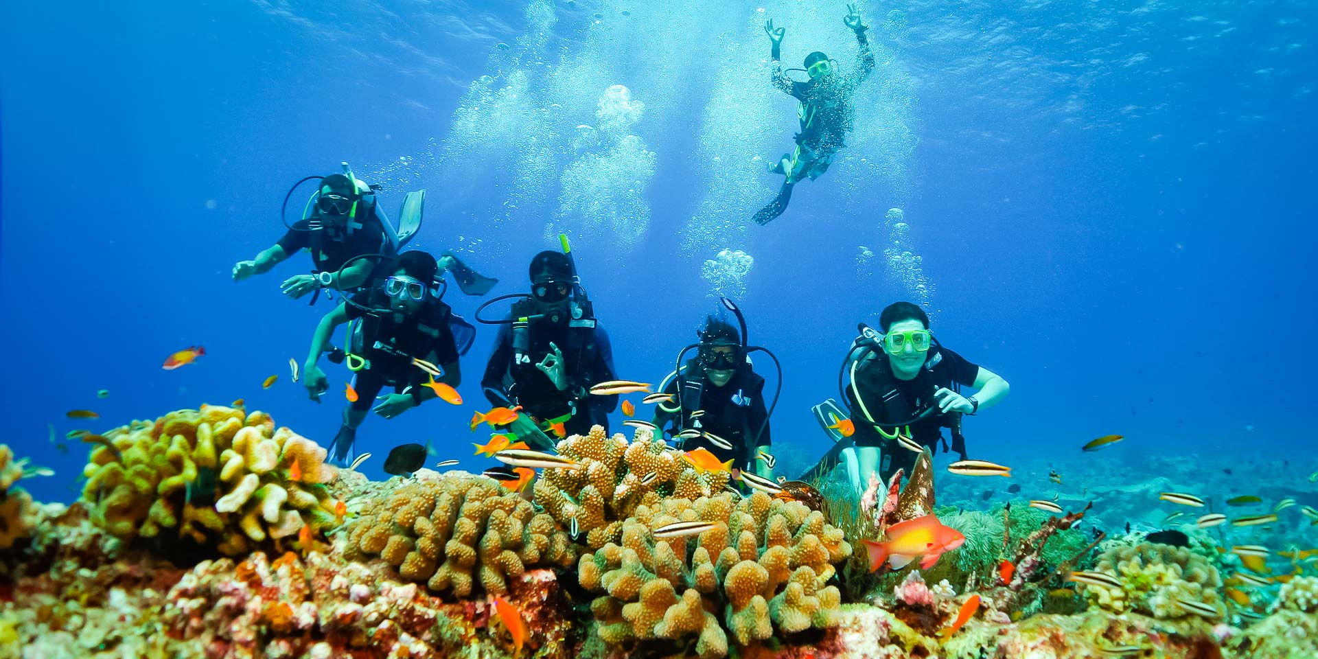 Dhiya's blog - Marine Savers internship Maldives