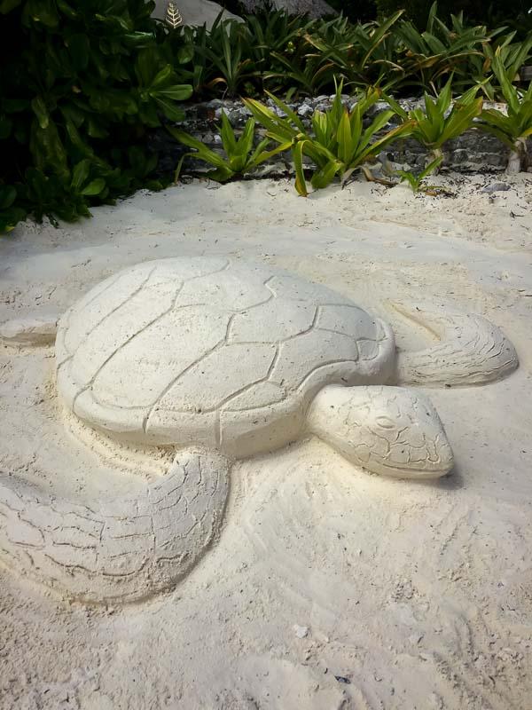 Sand art - Marine Savers volunteers Maldives turtles