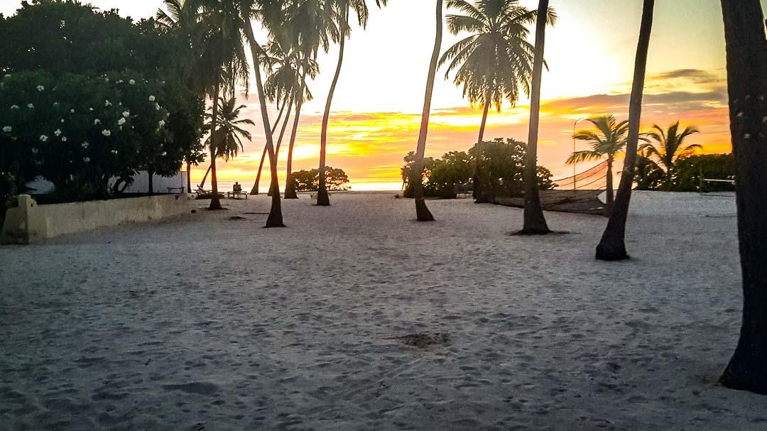 Seamarc Maldives Volunteers - Nicole's blog