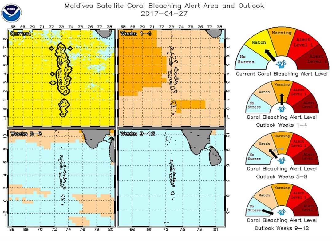 Maldives Satellite Coral Bleaching Alerts (NOAA)