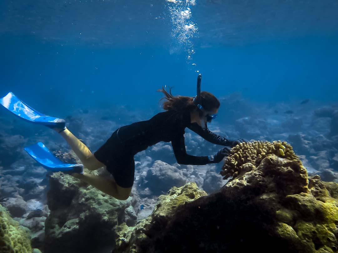 Irene's Internship - Marine Savers Maldives (3)