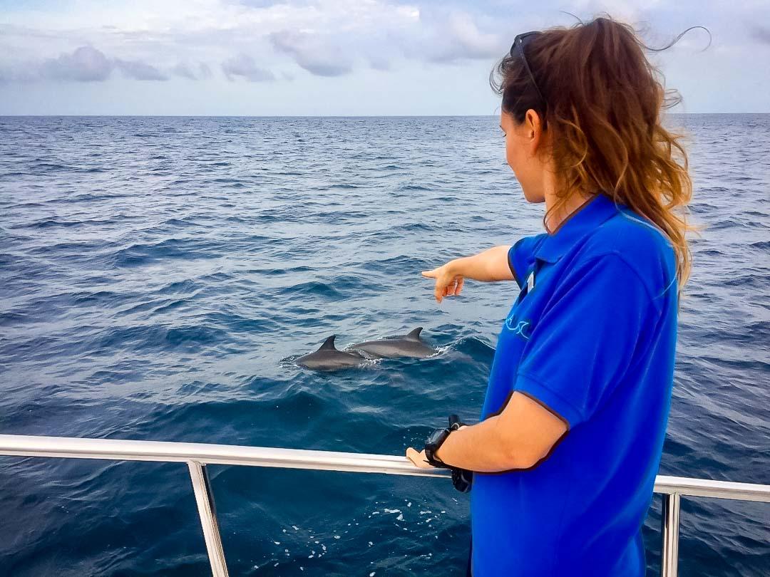 Irene internship - spinner dolphins - Marine Savers Maldives