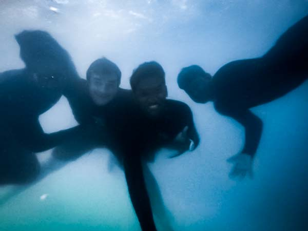 Greg's internship Marine Savers Maldives (3)