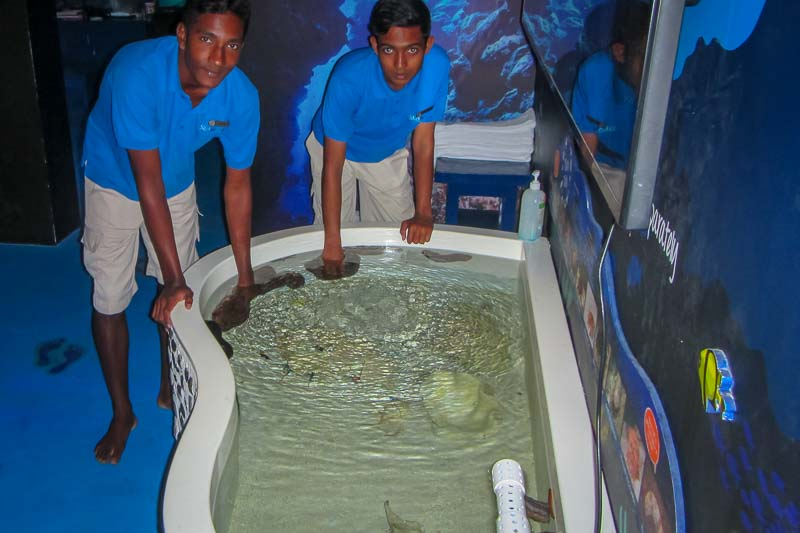 Four Seasons Apprentices at Marine Savers (0003)