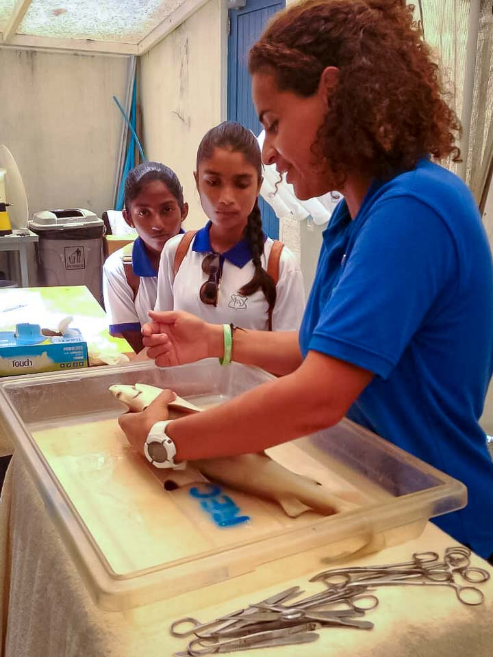 Shark dissection with Kamadhoo school