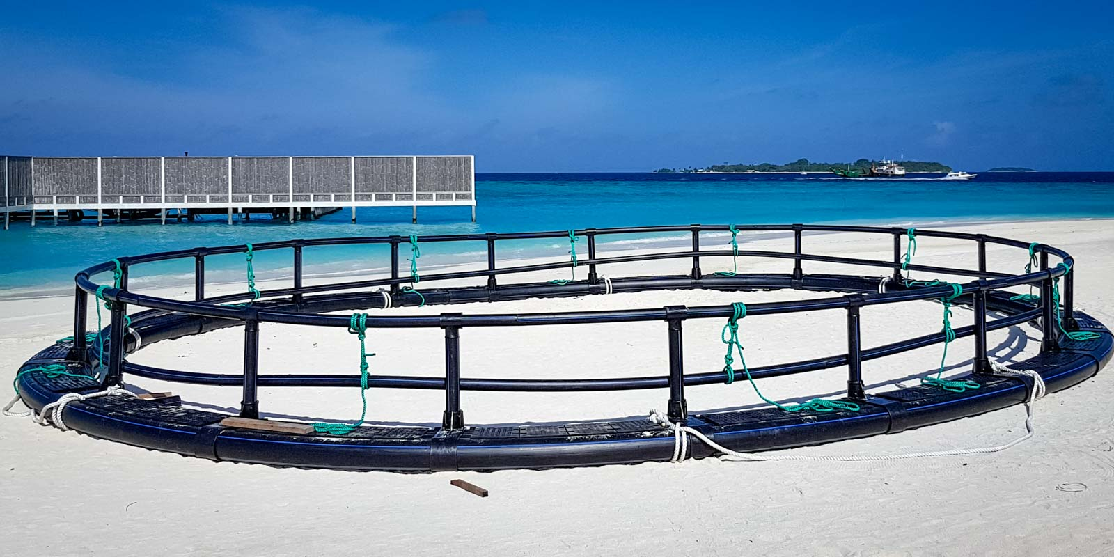 Sea turtle rehabilitation enclosure Marine Savers Maldives (1) assembly