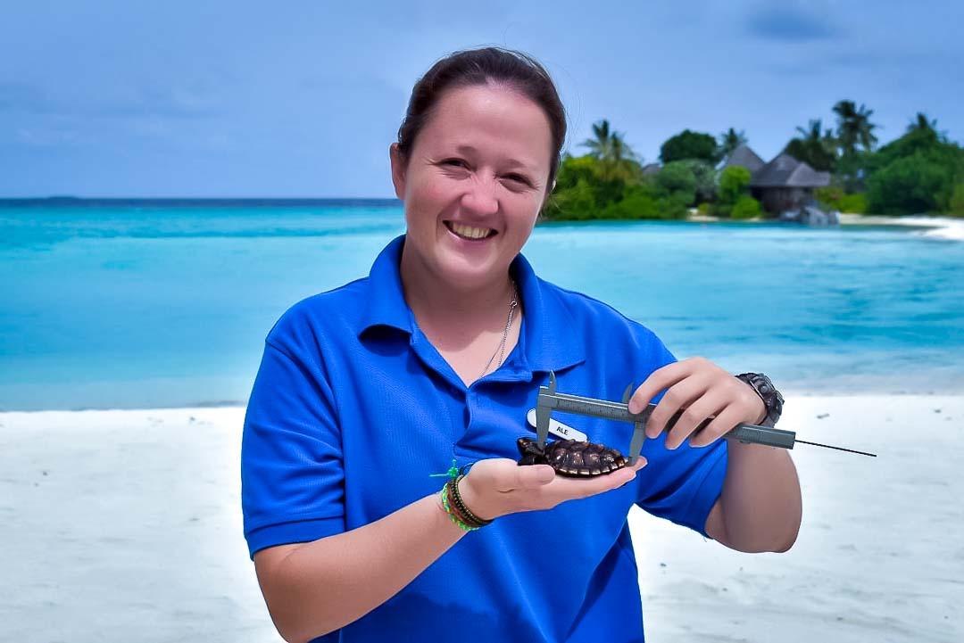 Turtle care at Marine Savers Kuda Huraa, Maldives