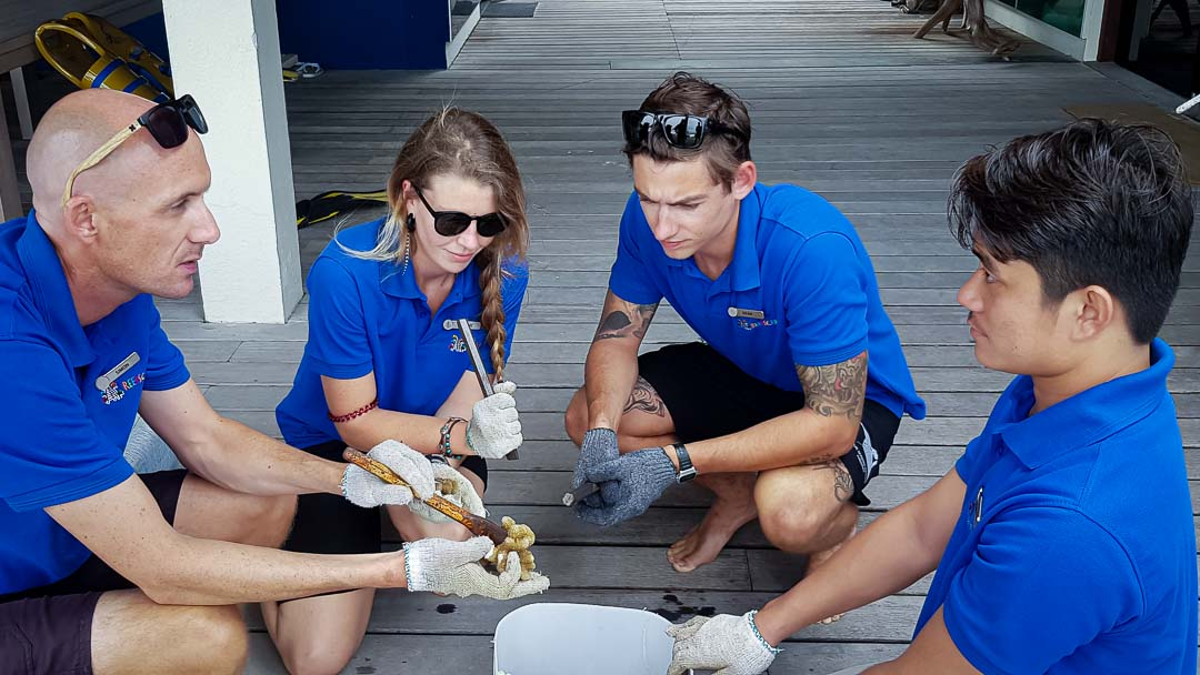 Reefscapers Volunteers Maldives - teaching coral propagation