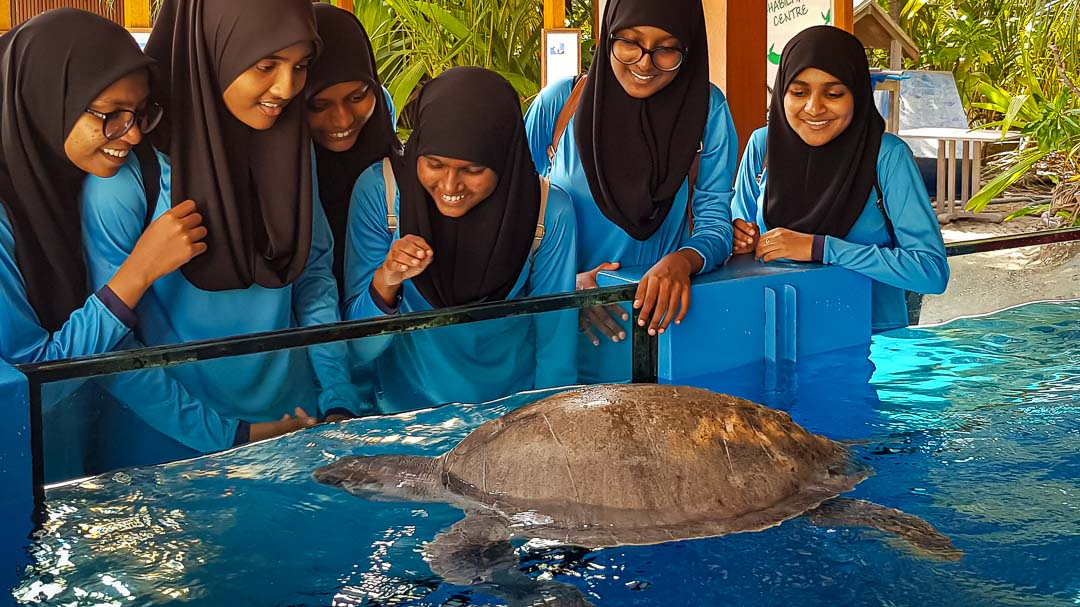 School visits to Marine Savers by Eydafushi