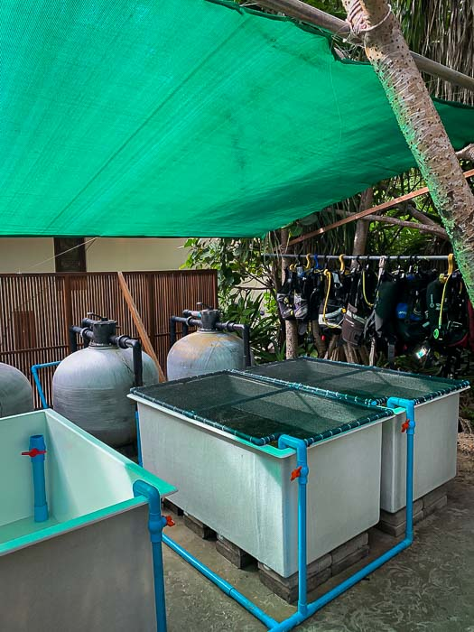 Reefscapers new outdoor coral propagation tanks Maldives (1) [800]
