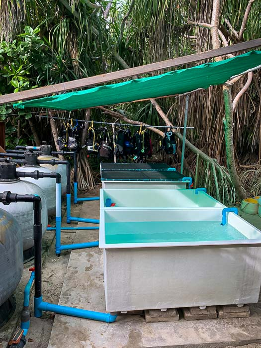 Reefscapers new outdoor coral propagation tanks Maldives (3) [800]