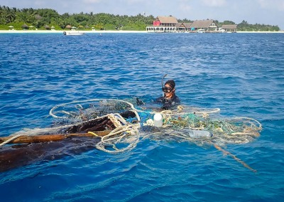 Rescue of Olive Ridley turtles entangled in ghost fishing nets Maldives
