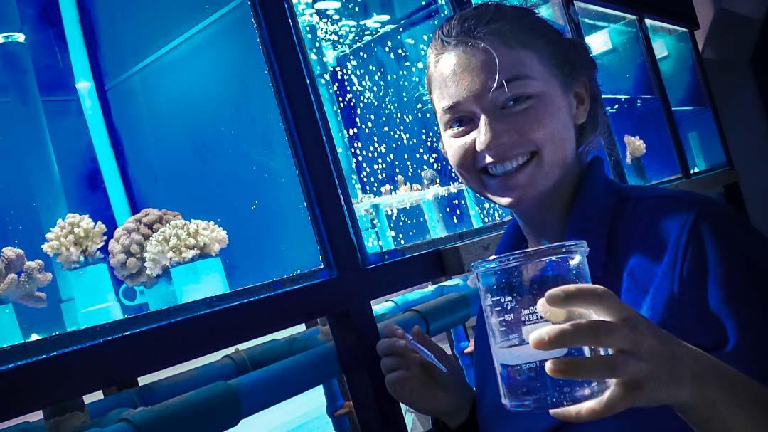 Irene's internship coral research Maldives