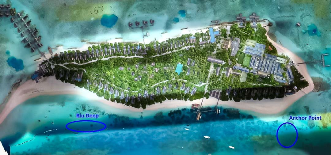 Reefscapers coral refuge bleaching mitigation Maldives