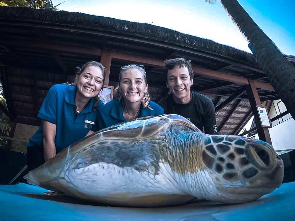 Iris - Marine Biology internship Maldives Turtle conservation