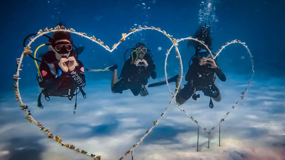 Maanee marine biologist Maldives Valentines day dive