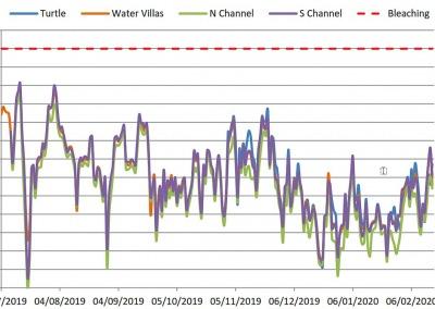 Ocean temperature logger Maldives 2019-2020 averages