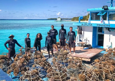 Reefscapers coral relocation to Voavah Maldives
