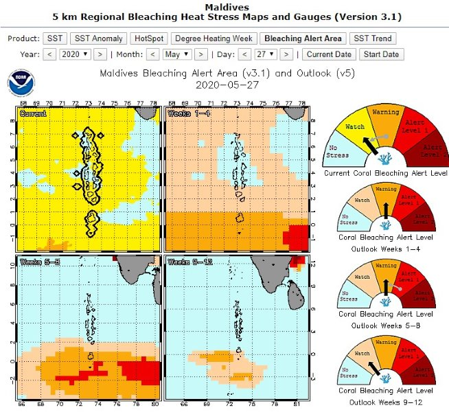 Reefscapers NOAA coral bleaching watch alerts Maldives