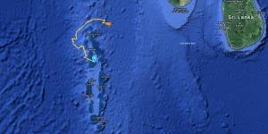 Sea Turtle satellite tracking map Maldives 2020 (June's Juvenile Clownfish)