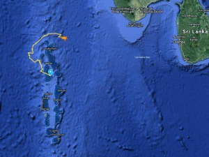 Sea Turtle satellite tracking map Maldives
