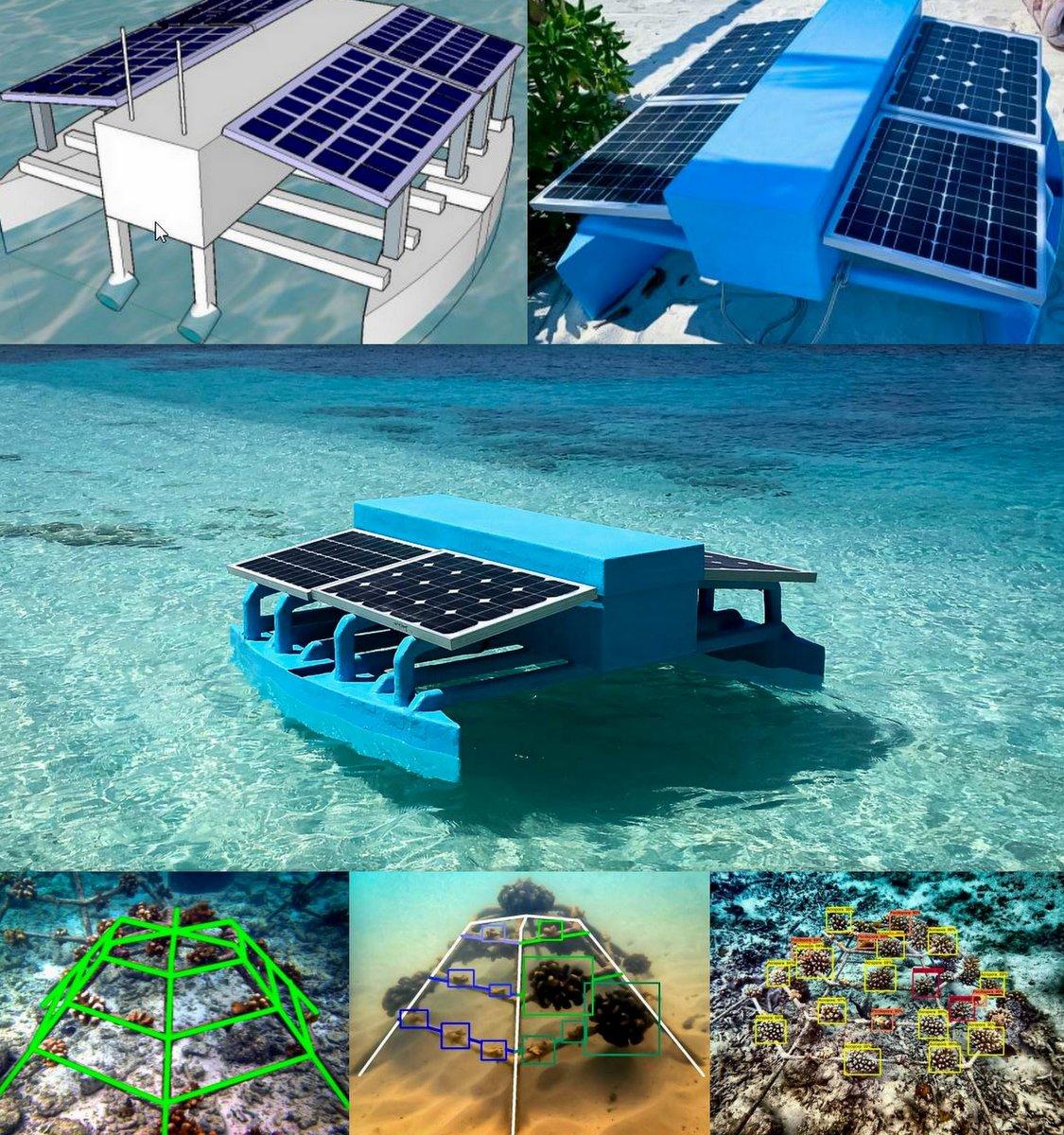 Marine Catamaran and AI Coral Detection collage employment vacancy robotics engineer