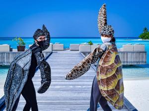 Jenn starting work as marine biologist in the Maldives