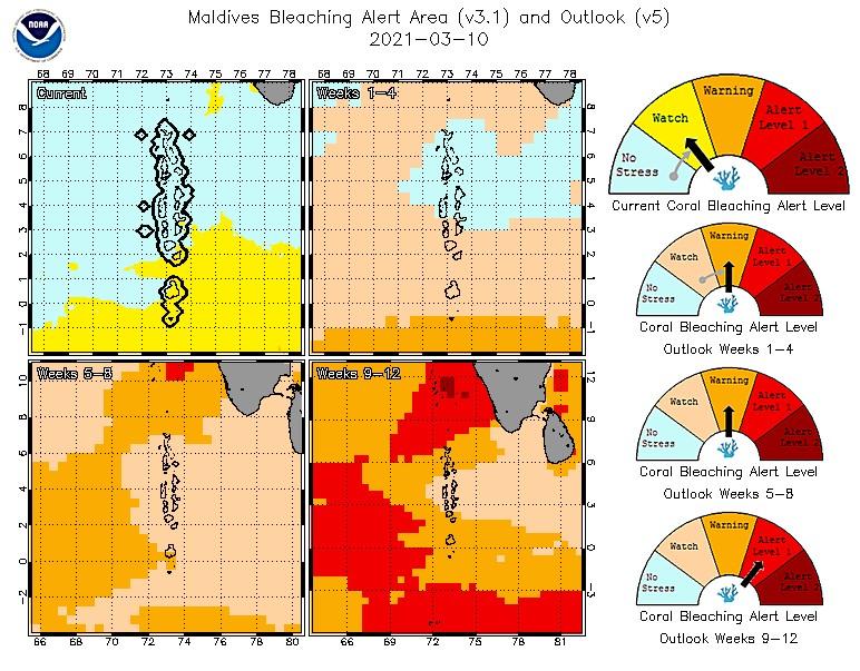 NOAA bleaching alerts Maldives