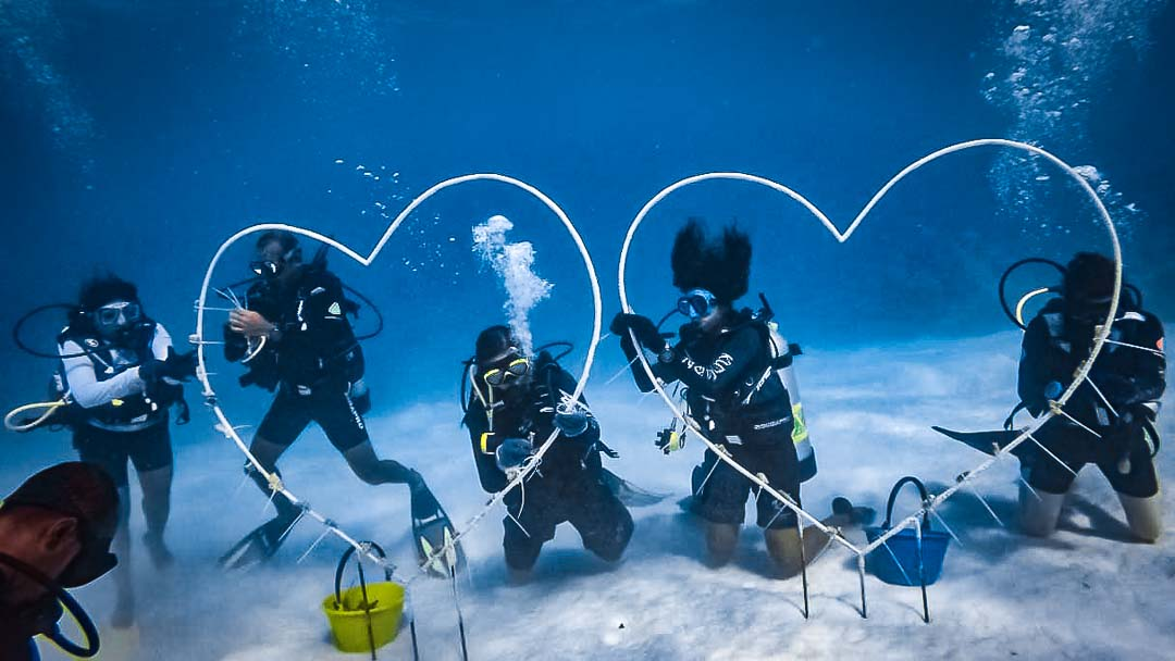 Reefscapers coral frames Valentine hearts Maldives
