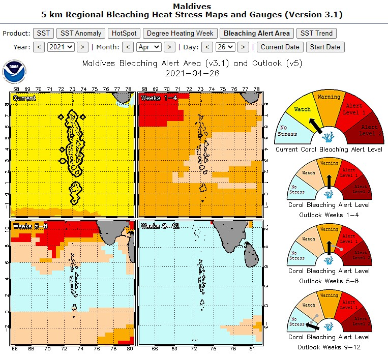 Coral bleaching Maldives alerts NOAA