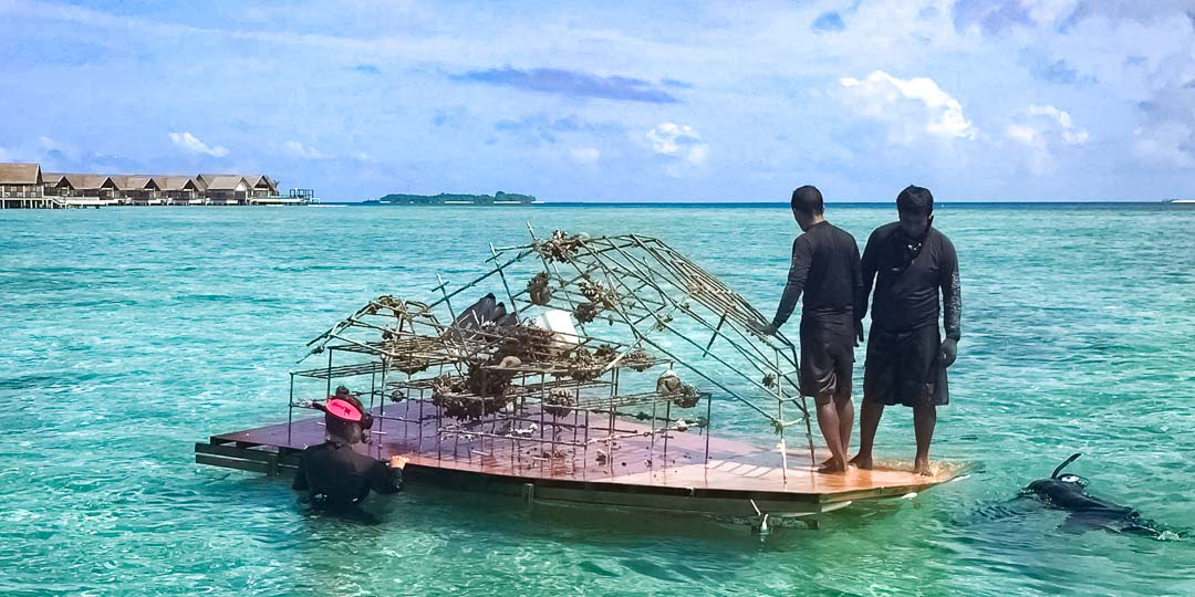 Margaux Reefscapers coral biologist Maldives - raft